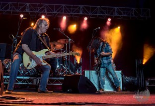 Walter Trout4