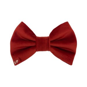 Red dog bow tie luxury red velvet. Designer dog bow with personalisation name and swarovski bow tie