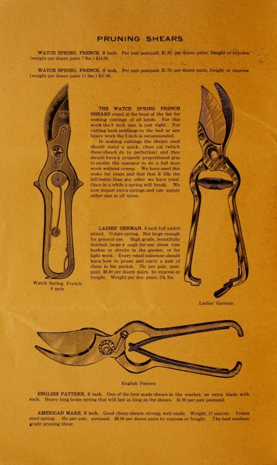 Pruning shears, c 1905. (Source: https://commons.wikimedia.org/wiki/File%3ABulletin_(16802638529).jpg)