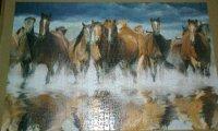 jigsaw horses