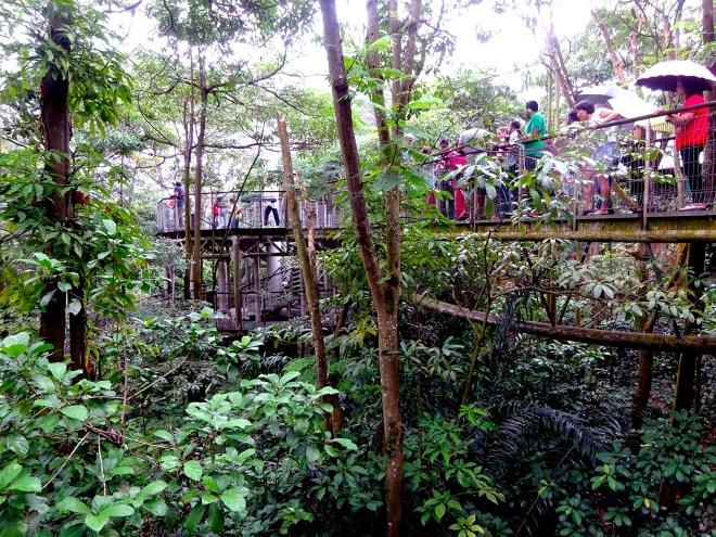 11 - Jurong Bird Park