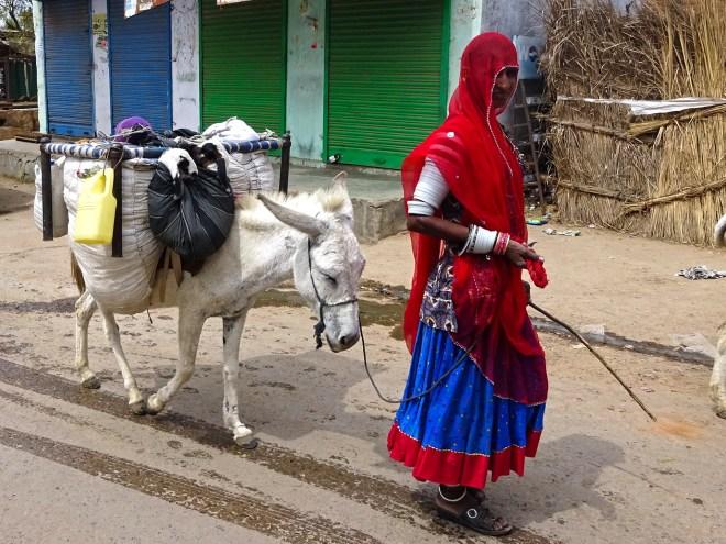 Nomads - Jaipur - 3