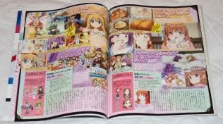 Megami MAGAZINE March 2015 Article 20