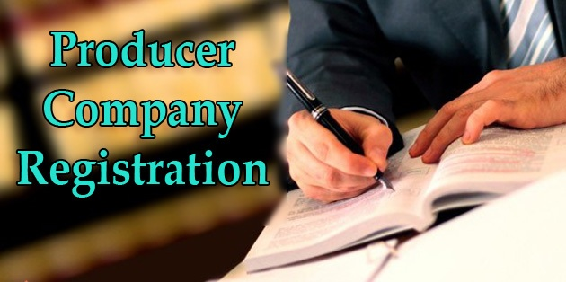What is a Producer Company?
