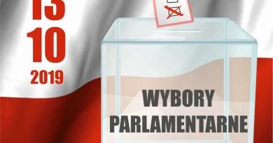 Jak głosowaliśmy w wyborach do sejmu i senatu w gminie Swarzędz – podsumowanie
