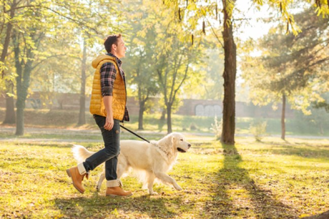 Man walking dog in park