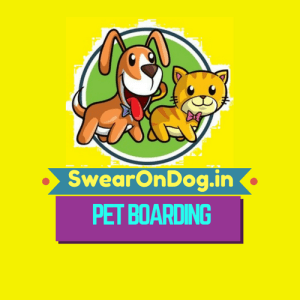 Best Dog Boarding Places in Bangalore: Homestay, Kennel Boarding in Bangalore