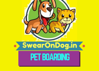 Best Dog Boarding In Bangalore