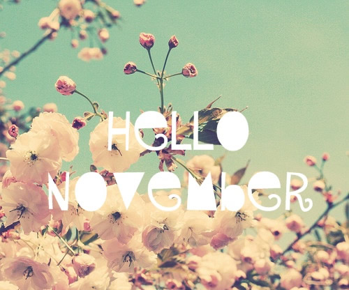 Hello-november-images