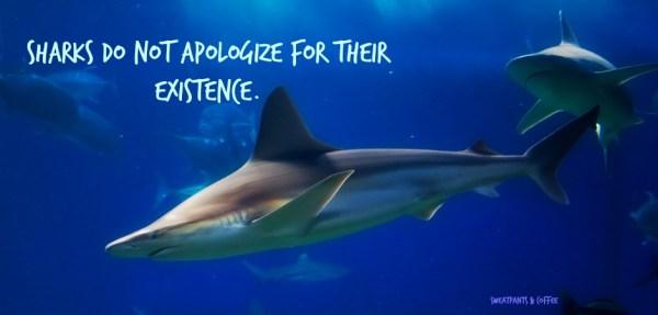 Sharks_do_not_apologize2_featuredimage