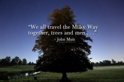 Misty Moonlight by Brian Tomlinson John Muir quote WP