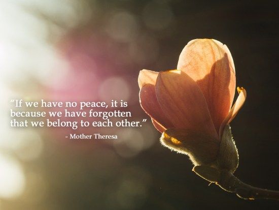 Mother Theresa peace quote