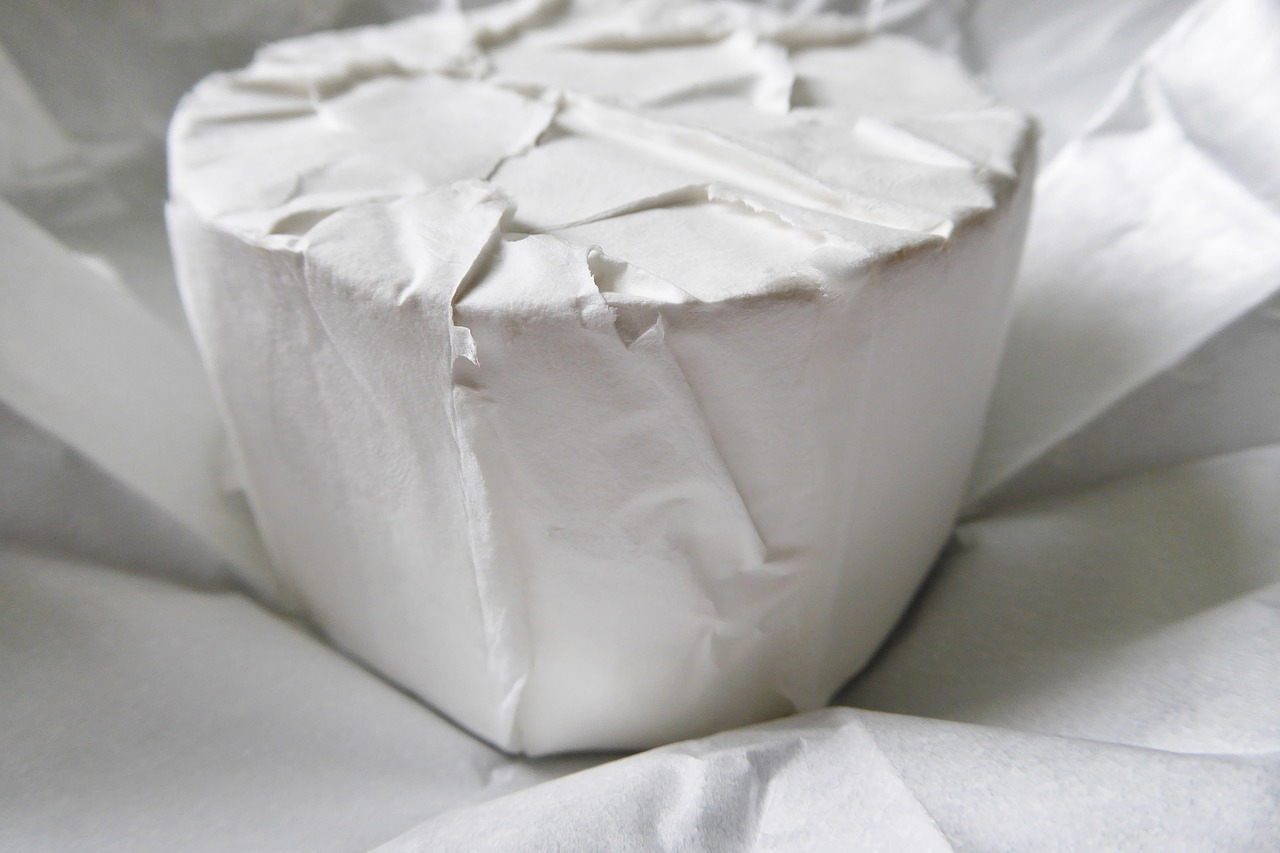 How to Make Cheese (4)