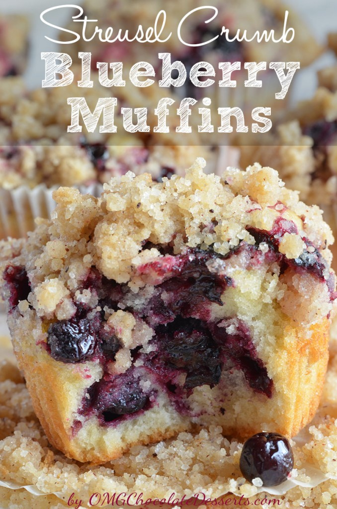 Blueberry Muffins with Crumb Topping from OMG Chocolate Desserts