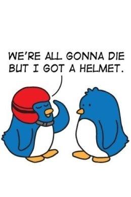 ss-blog-helmet
