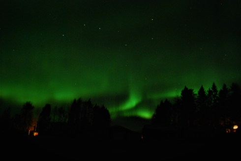 Northern Lights over our forest near Vindeln, Vasterbotten, Northern Sweden. Photo taken by Kristin King.