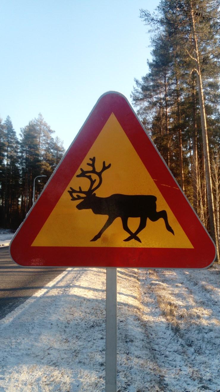 reindeer sign sweden fishing and birding