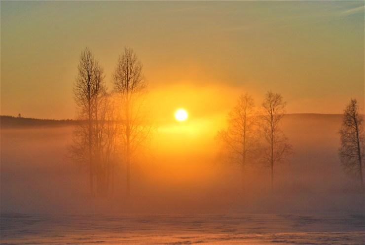 sunsetfog
