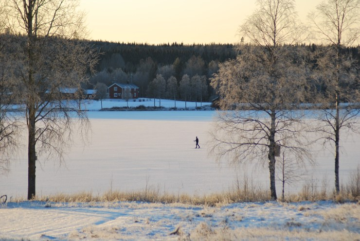 Frozen lake and skiing.