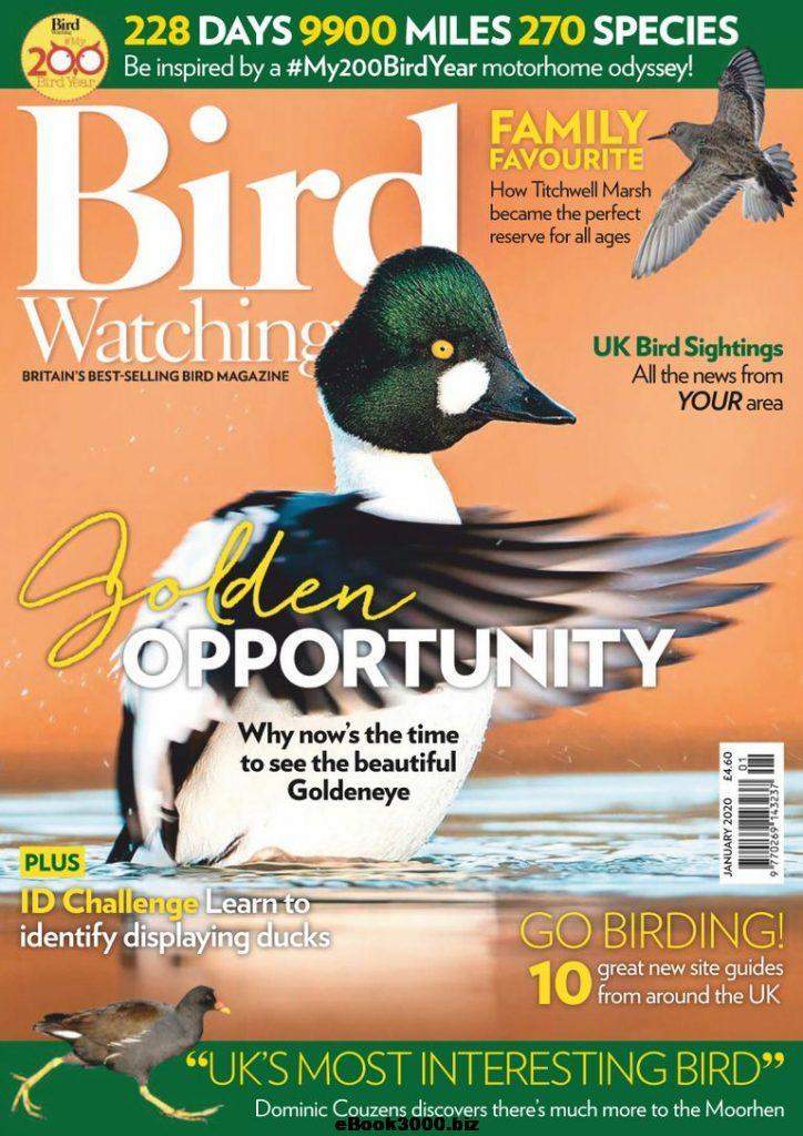 Bird-Watching-UK-January-2020 sweden