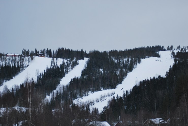 Ski slopes near sweden fishing and birding.