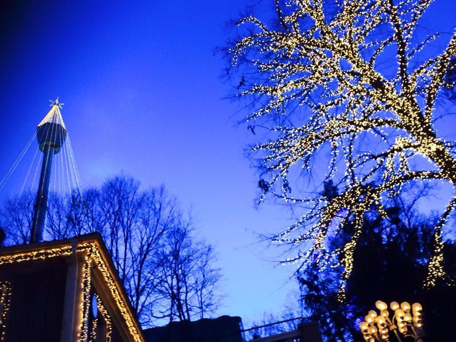 「[独学スウェーデン語 :日本で学ぶ編]日本語と英語の先生が考える、話せるようになる独学スウェーデン語。」のアイキャッチ画像