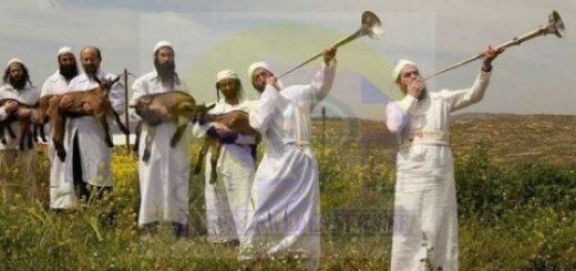 التحريض على العرب والمسلمين في السويد