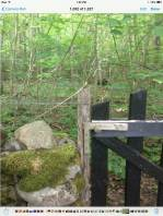 kosebo-woods