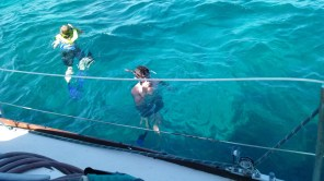 Snorkelers at the reef.