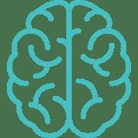 Human Body and Cannabinoids