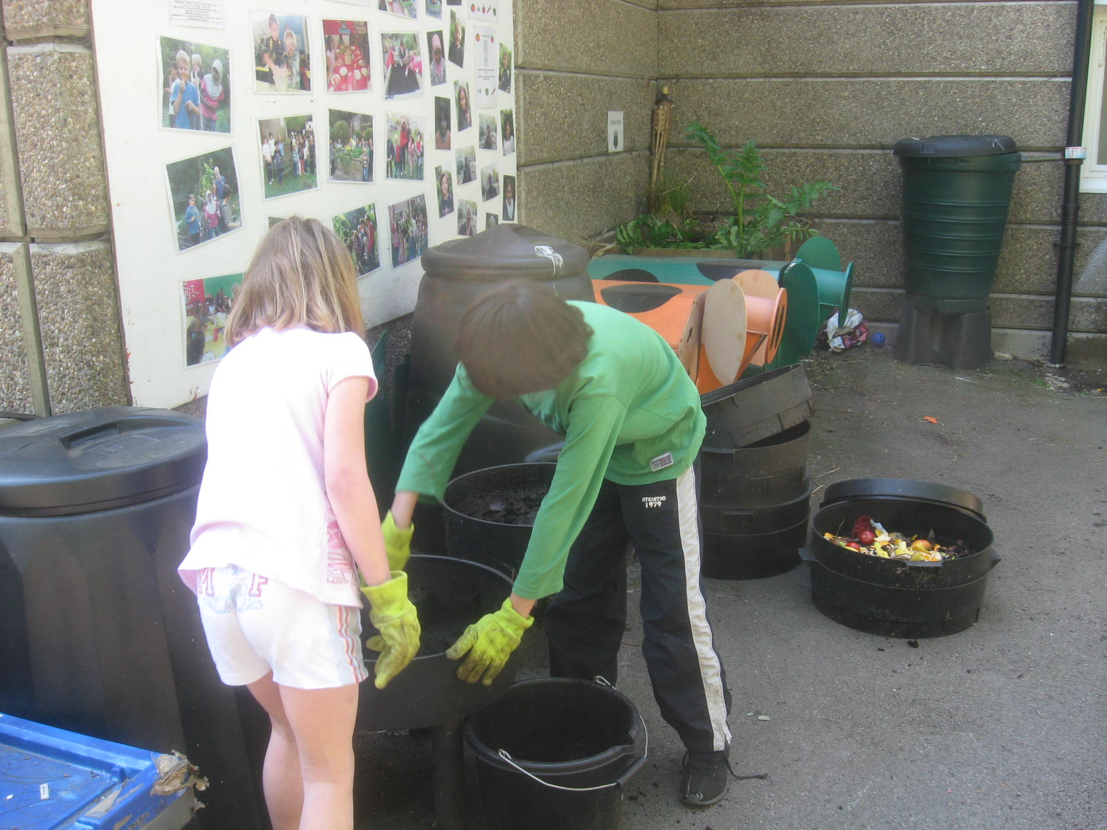 Eco committee cleaning out the wormeries