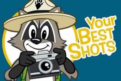 Ranger Rick Photo Contest