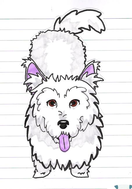 sammydog