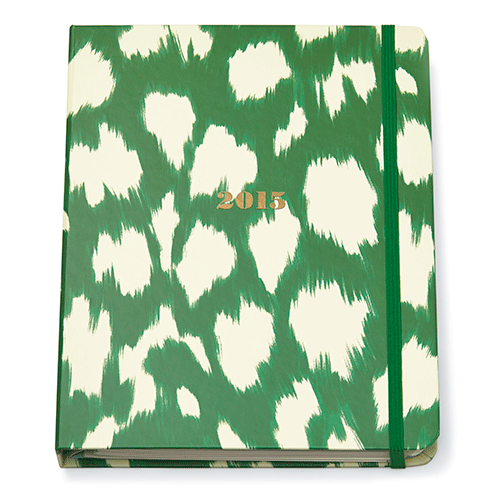 kate-spade-new-york-2014-agenda-large-17-month-green-ikat