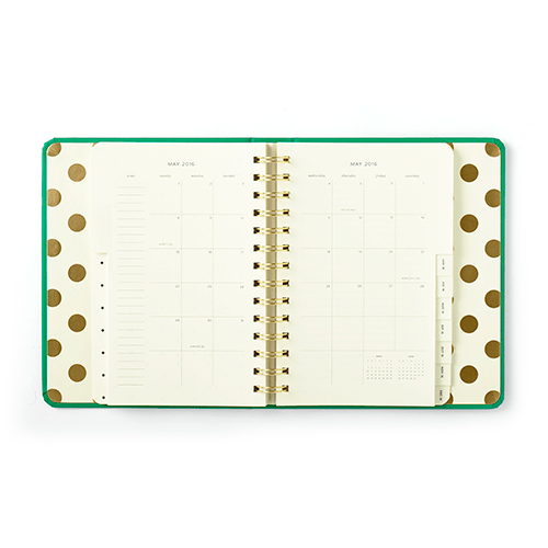 agenda_quick_curious-_interior_1-1