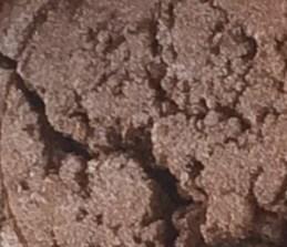 Sweet Poppy Stencil: Mica Powder Brushed Bronze