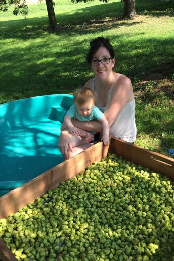 2015: Harvesting