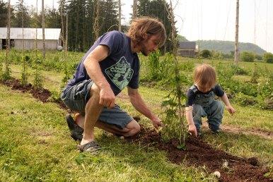 2016: Mid May mulching and training