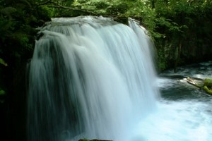 水素水 日本トリム