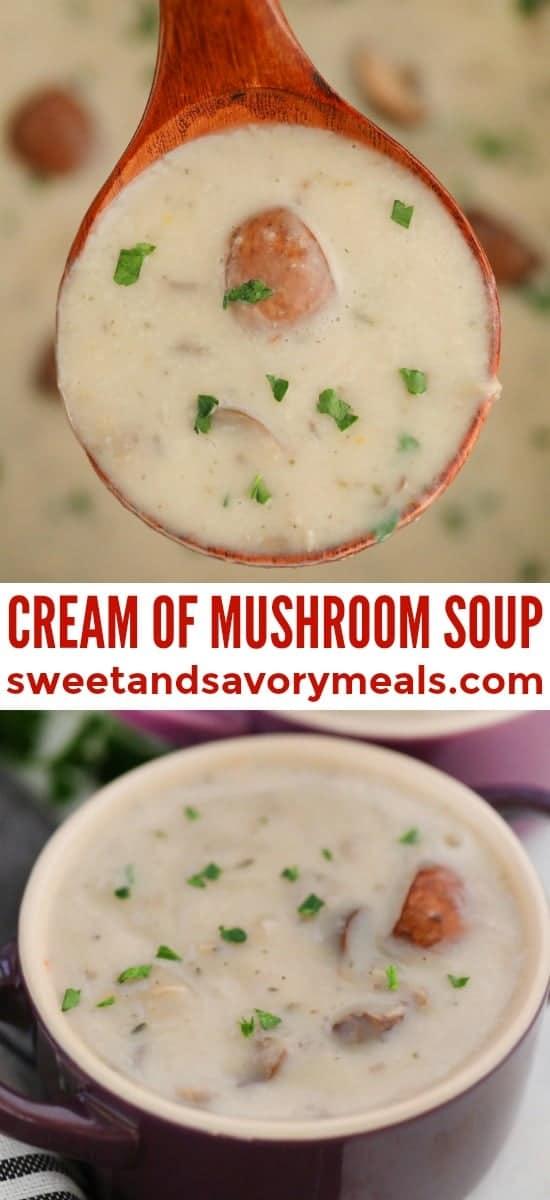 Easy Cream of Mushroom Soup Recipe