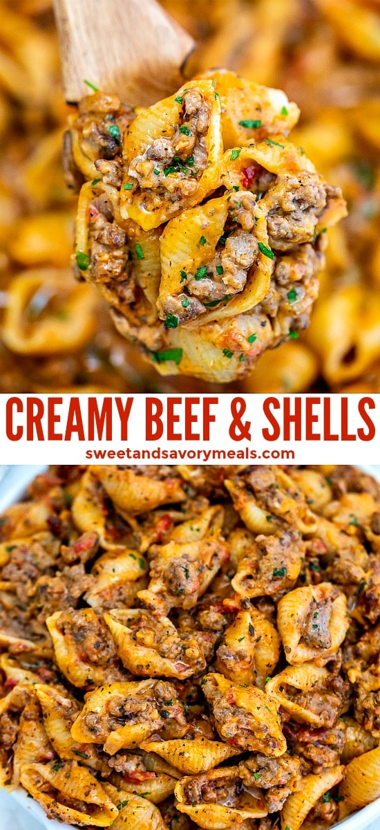 Creamy Beef and Shells is a hearty pasta dish that is perfect for a quick dinner for the whole family! It is rich, flavorful, and cheesy and even kids will love it! #pasta #beefandshells #easydinner #sweetandsavorymeals #easyrecipes