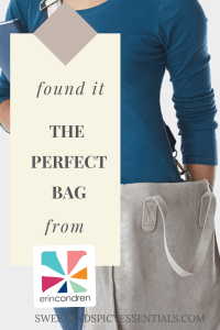 Found it! The perfect bag for moms from Erincondren.com