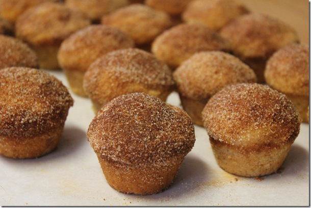 Muffins that Taste Like Donuts (3/3)