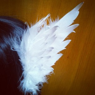 xecty wings