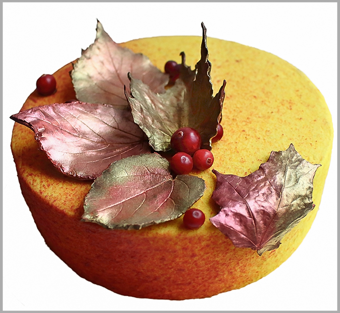 Orange Mousse, Apple and Cranberry Compote and Hazelnut Dacquoise on Hazelnut Brownie ~ Autumn Entremet