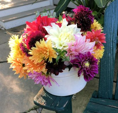 Bowl full of bright summer dahlias from the garden