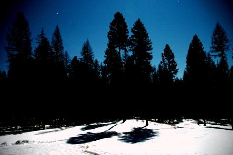 Moon & Star Glow