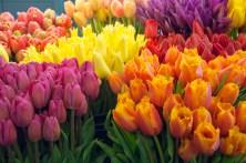 Pike's Market, Flowers