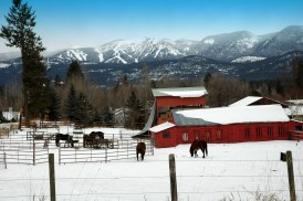 Big Mountain, Horses & Red Barn, January