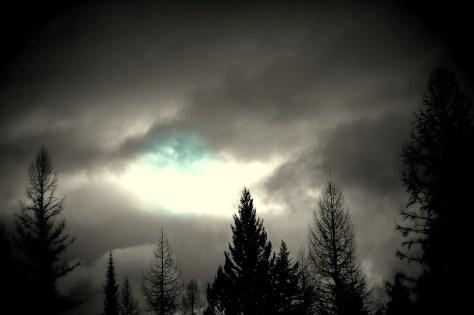 Blue Spot in Dark Sky with Dark Trees